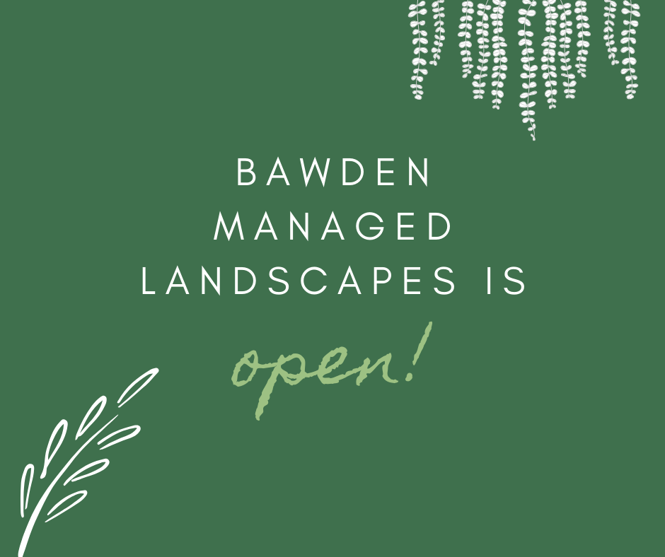 We're Open! - COVID-19 Update